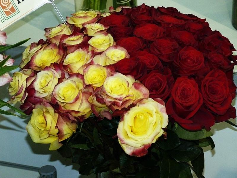 Картинки букет роз для подруги